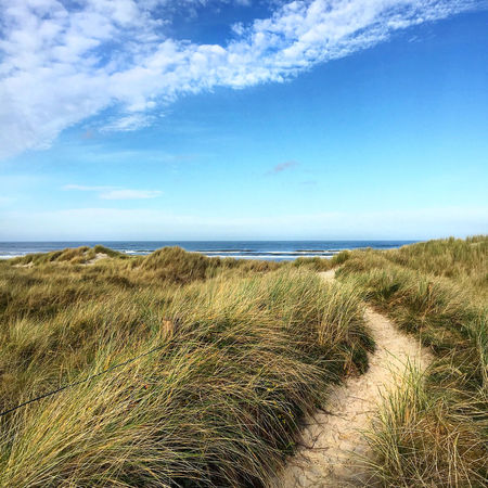 Beach Beach Photography Beachphotography Beautiful Blue Blue Sky Bluesky Coastline Dune Dunes Horizon Over Water Idyllic Landscape Langeoog Life Is A Beach Nature Nordsee Ocean Outdoors Sand Sea Seascape Summer Trip Walk This Way