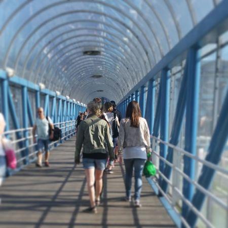 Taking Photos Streetohotography Bridge