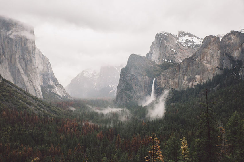 Cloudy Day El Capitan Forest Mountains Nature Rainy Trees Waterfall Yosemite Yosemite National Park Yosemite Valley The Great Outdoors - 2017 EyeEm Awards