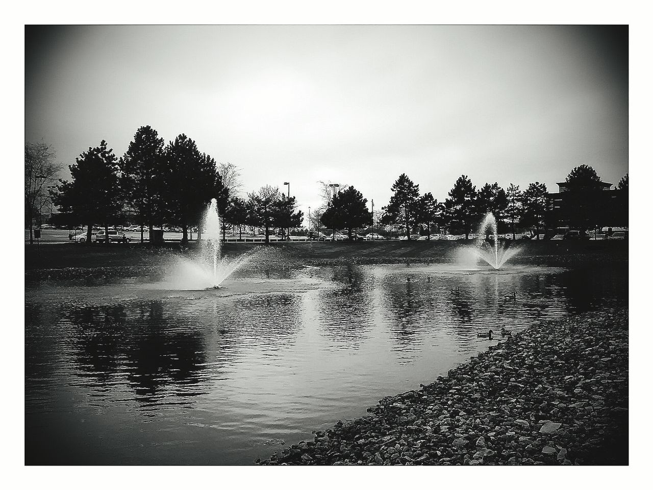 water, spraying, tree, motion, splashing, outdoors, nature, reflection, day, real people, lake, beauty in nature, sky, irrigation equipment
