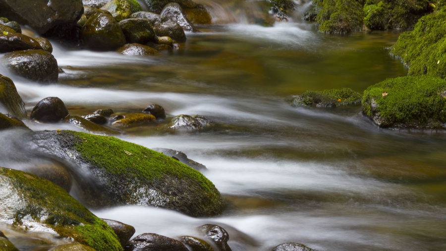 Beauty In Nature Blurred Motion Flowing Flowing Water Forest Italy Land Long Exposure Moss Motion Mountain Nature No People Outdoors Plant Power In Nature Purity River Rock Rock - Object Scenics - Nature Stream - Flowing Water Tree Water Wood - Material