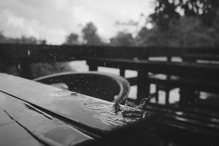 rain drops No