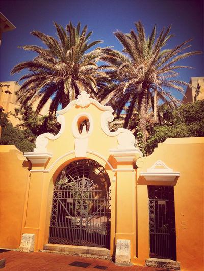 Summer Beach Palm Trees Italian Riviera