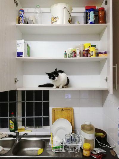 Kitchen-friendly