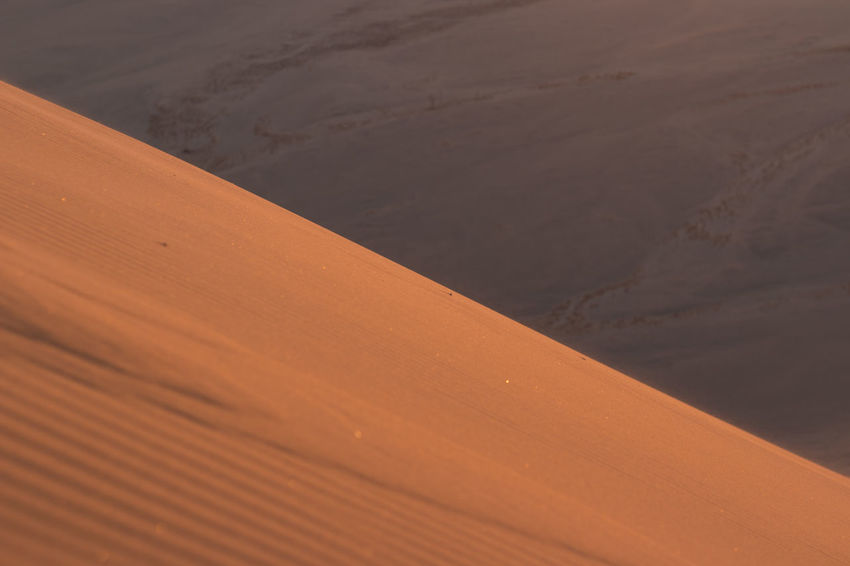 Arid Climate Backgrounds Beauty In Nature Brown Close-up Day Desert Landscape Namib Desert Namibia Namibia Desert Namibia Landscape Nature No People Outdoors Pattern Sand Sand Dune Scenics Tranquility