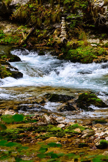 Motion Water Nature Plant Beauty In Nature No People Day Blurred Motion Flowing Water Rock Land Sport Forest Solid Tree Outdoors Downloading Rock - Object Scenics - Nature Flowing Power In Nature Purity Vintgar Gorge