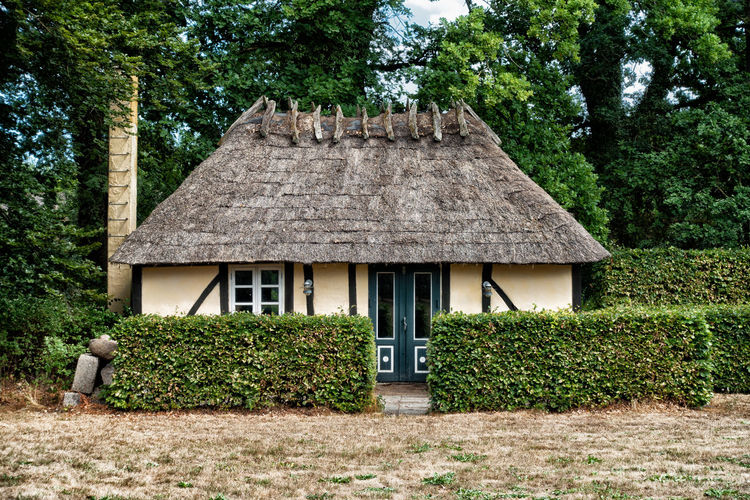 Historical Danish house with thatched roof in a forest with deciduous trees Point Of Interest Denmark Green Rynkeby Architecture Building Building Exterior Danish Deciduous Trees Dry Entramado Forest Forest Photography Front View Grass Grass Meadow Green Color Hedge House Nature No People Outdoors Small Thatched Roof Tree