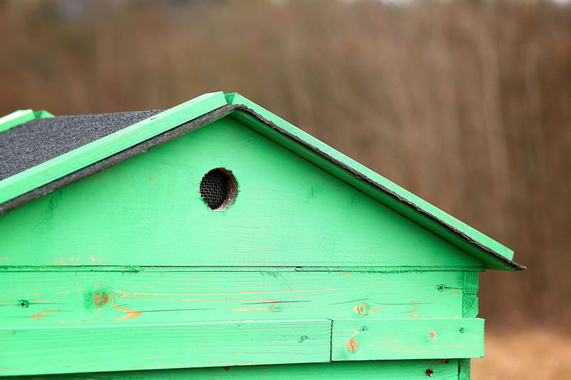 Close-up of birdhouse on wooden wall of house