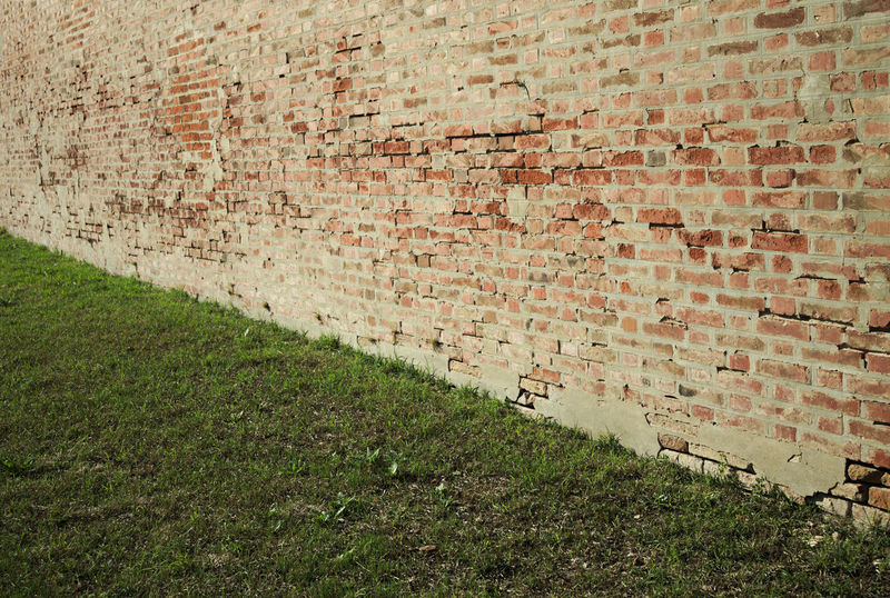 Brick and grass texture Textured  The Week On EyeEm Tranquility Architecture Brick Wall Building Exterior Built Structure Close-up Day Grass No People Outdoor Outdoors