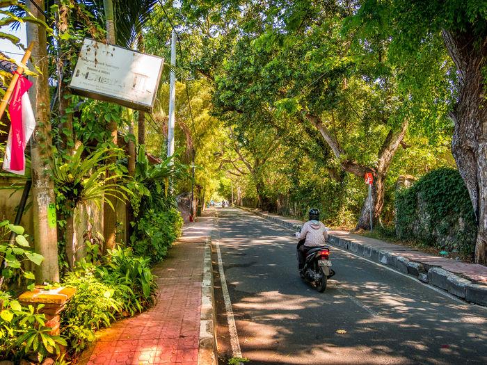Streetscape of