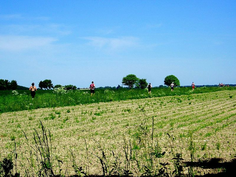 Field Runningshot Running Running People In Line People Photography People In Nature From My Point Of View Landscapes Landscape Nature