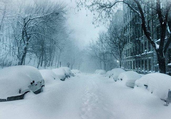 Inwood Snow Snowfall Blizzard NYC Storm Cars Street