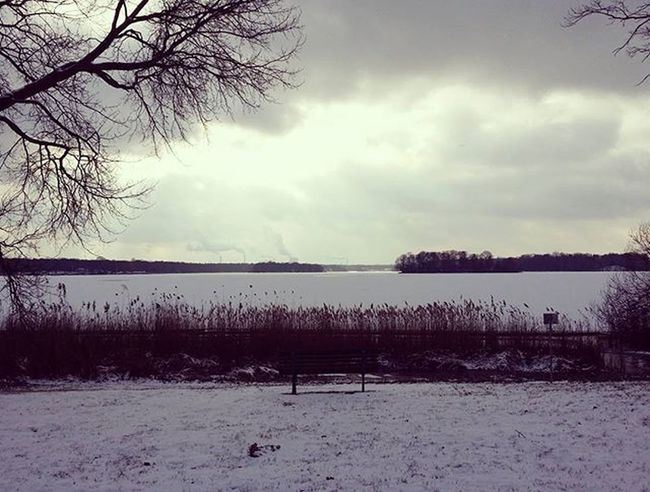 Winterwonderland Winter Snow Schnee Tegel Berlin Teglersee Laketegel