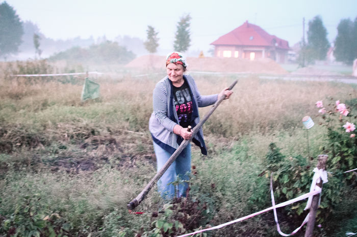 Mowing the grass Autumn Cold Field Fog Grass Mowing Old Woman One Person Outdoors Poland Real People Scythe Strong Woman Village