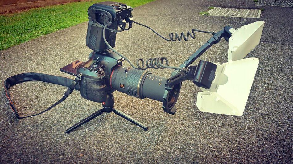 Sonyphotography A77 Sony Minolta Macro Photography EyeEm Macro 105mm Sigma Macro It Shines Twice Flash