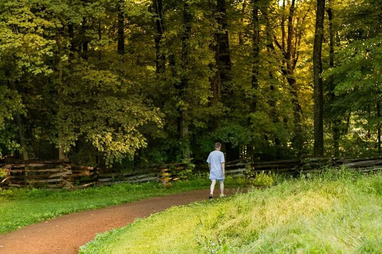 Forestwalk Forest Photography Nature Photography Man Walking In The Woods Sunset #sun #clouds #skylovers #sky #nature #beautifulinnature #naturalbeauty #photography #landscape
