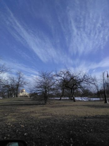 Bare Tree Sky Nature Tranquility Landscape Beauty In Nature Afaceinthesky Cloud - Sky LBTHE1 Outdoors Fromtearstoink