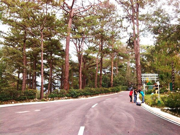 Roadandscenery Baguio City Campjohnhay Longwalk Nature