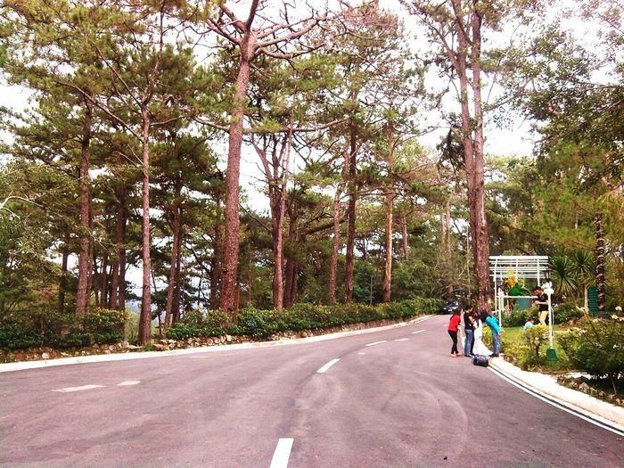 Roadandscenery Baguio City Campjohnhay Longwalk Nature