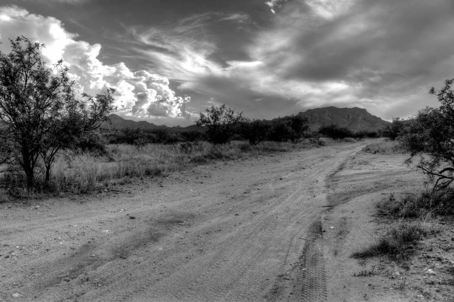 Tranquil Scene Cloud - Sky Tree Tranquility Landscape Scenics Sky Weather The Way Forward Cloudy Non-urban Scene Mountain Beauty In Nature Nature Dirt Road Travel Destinations Remote Tourism Outdoors Day Ladyphotographerofthemonth Streamzoo Family Offroaddrive