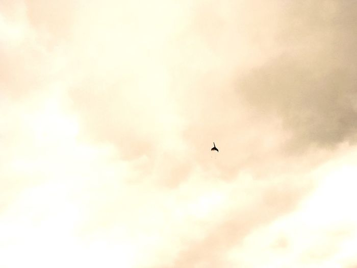 Tiny Kite Distant Sky And Clouds Pink