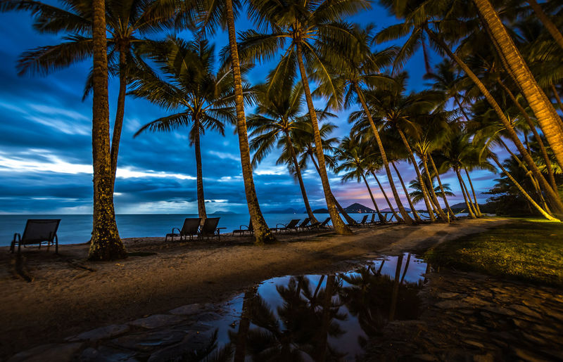Beach Beachphotography Beauty In Nature Blue Cloud Cloud - Sky Coconut Palm Tree Growth Horizon Over Water The Essence Of Summer - 2016 Eyem AwardsNature The Essence Of SummerOutdoors Palm Tree Scenics Sea Shore Sky Tranquil Scene Tranquility Tree Tree Trunk Tropical Vacations Water