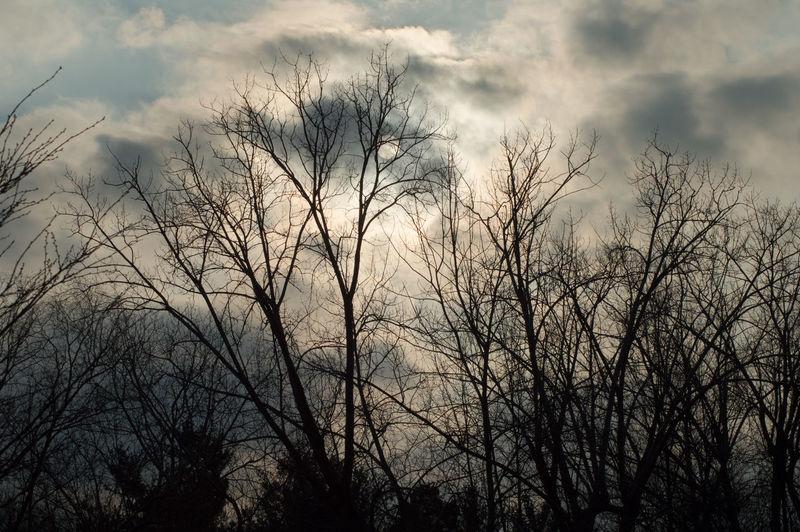 Tomorrows Sky Dramatic Sky Outdoors Cloud - Sky Sky Silhouette