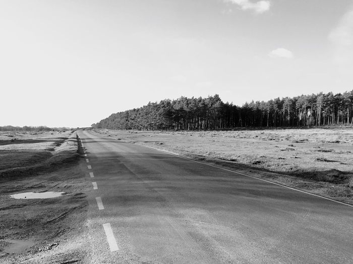 Road and trees in the Forest🌲 Road Landscape Sky Nature Scenics Tranquil Scene Beauty In Nature Black E White Photography Monochrome Outdoors Road Trees