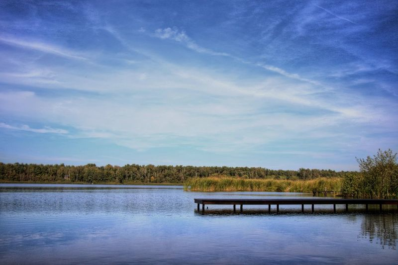 Calm place Steg Outdoors Calm Scenics - Nature Sky And Clouds Water Tree Lake Blue Rural Scene Reflection Bird Sky Cloud - Sky Wetland Tree Area
