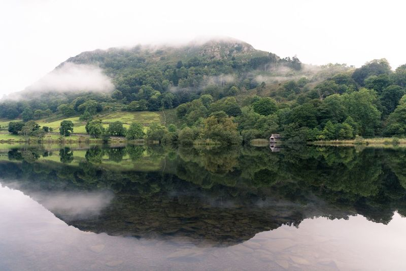 Rydal Water / Great Rigg Water Nature Beauty In Nature Mountain Scenics Tranquil Scene Tree Reflection Lake Tranquility Outdoors Day No People Fog Landscape Sky Great Rigg Lake District Lake Rigg The Week On EyeEm The Week On EyeEm RydalWater Lost In The Landscape Shades Of Winter