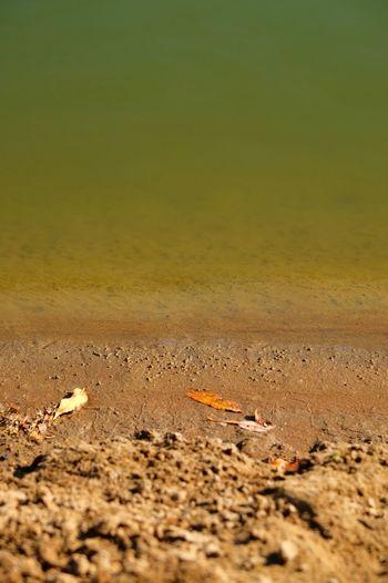 Deep Water Sand Outdoors Nature No People Tranquility Fujifilm Fujifilm_xseries Fujifilm X-E2 1855mm Uralriver Ural Uralsk Kazakhstan