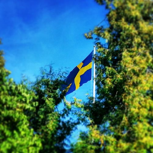 Sweden Sverige Instsdaily Instadaily Instaphooto Ig_cameras_united Ig_sweden Instamood Instagrammers Instasweden Instamania Worldunion Wu_sweden Picoftheday Scanshots Flagga Flag