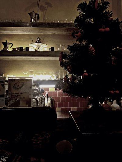 Xmas Christmas Christmas Tree