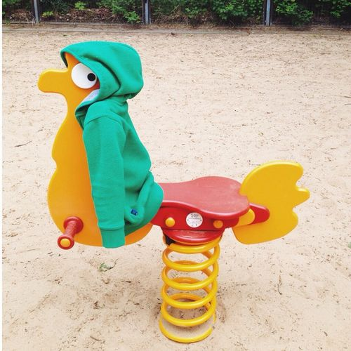Stylish rooster Toys Playground Vscocam