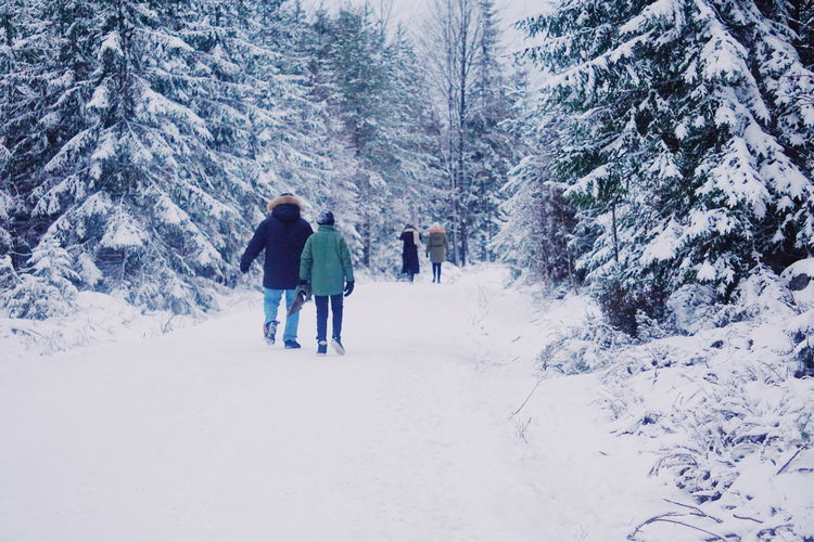 people walking in the snowcapped forest Snow Snow Covered Snowcapped Winter Wintertime Winter Landscape Winter Trees Winter Snow Cold Temperature Nature Tree Forest Day Full Length Lifestyles Beauty In Nature Outdoors Adventure People Real People Warm Clothing Leisure Activity