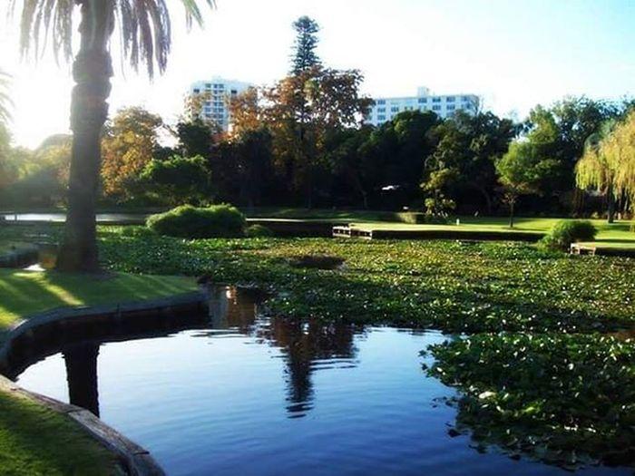 Queenspark Perth Australia WestCoast Cityofperth Garden Green Nature