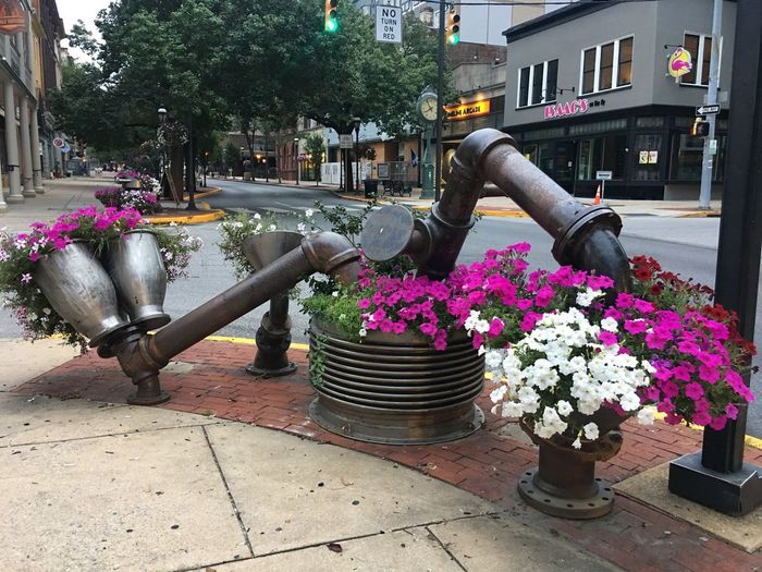 Street Art - Beauty in the eye of the beholder. Flower Flowers Street Photography Streetart Streetphotography Street Art Streetcorner Intersection Repurposed Art Waterpipe Pipe - Tube Built Structure