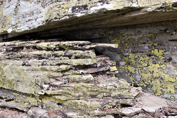 Lichen Abandoned Backgrounds Close-up Limestone Nature No People Old Outdoors Pattern Rondanenasjonalpark Rough Textured  Weathered