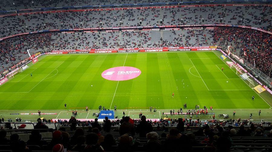 Stadium Fan -