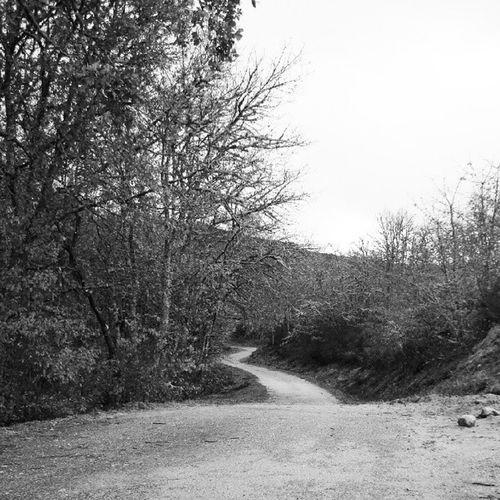 Senda Caminho Road