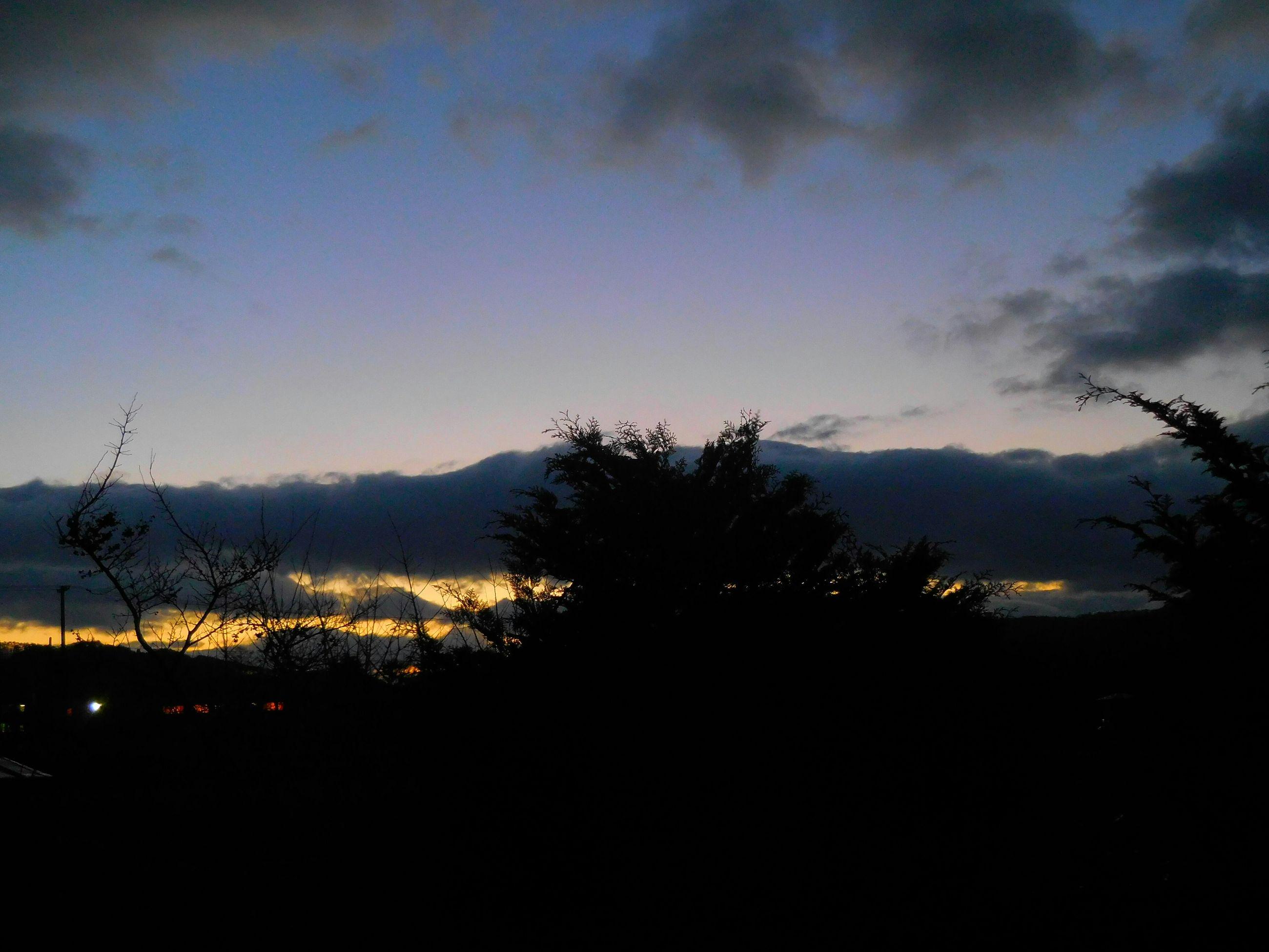 silhouette, sky, tree, tranquil scene, tranquility, mountain, scenics, beauty in nature, dusk, nature, landscape, cloud - sky, night, mountain range, dark, outdoors, growth, idyllic, no people, non-urban scene