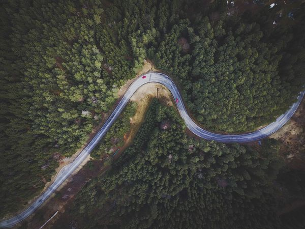 Dji Mavic Mavic Pro Djimavic DJI Mavic Pro Drone  Dronephotography Tree Nature Outdoors Road Wanderlust Wanderfolk Visualsofearth Austria ❤ Folkgood Visitaustria Discoveraustria Visualsoflife Austria Tonekillers Dronepointofview Droneart Droneoftheday Earth 🌏 Is Beautiful