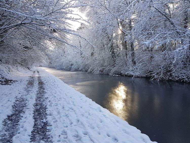 Canal Canals And Waterways Towpath Photography Cold Temperature Ice Winter Nature Reflection Snow Water Frozen Beauty In Nature Scenics EyeEmNewHere Shades Of Winter