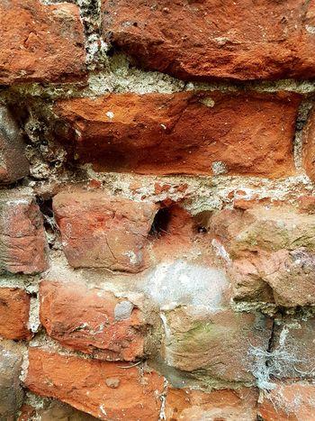 broken brickstones Brick Wall Brickstone Building Broken Brickstones Historical Building Ruins The Graphic City