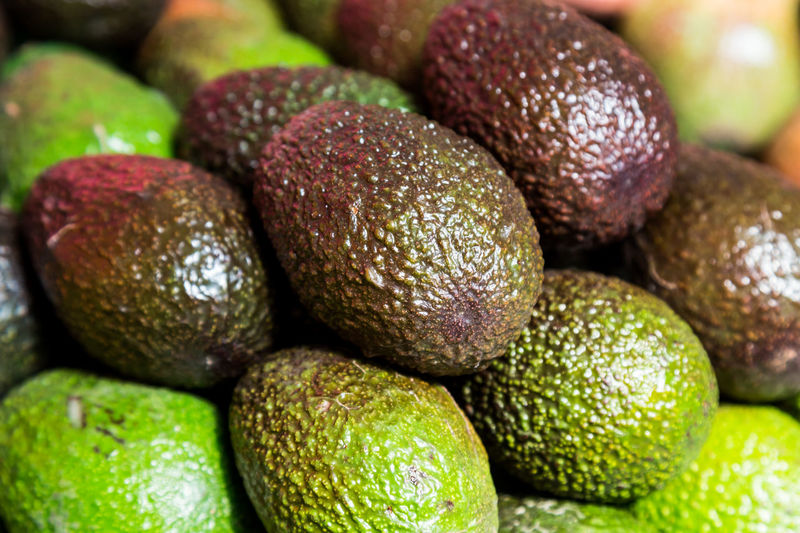 Stack of organic and nutritious avocado Avocado Close-up Day Food Food And Drink Freshness Fruit Green Color Healthy Eating Indoors  Large Group Of Objects No People Nutritious Fruit