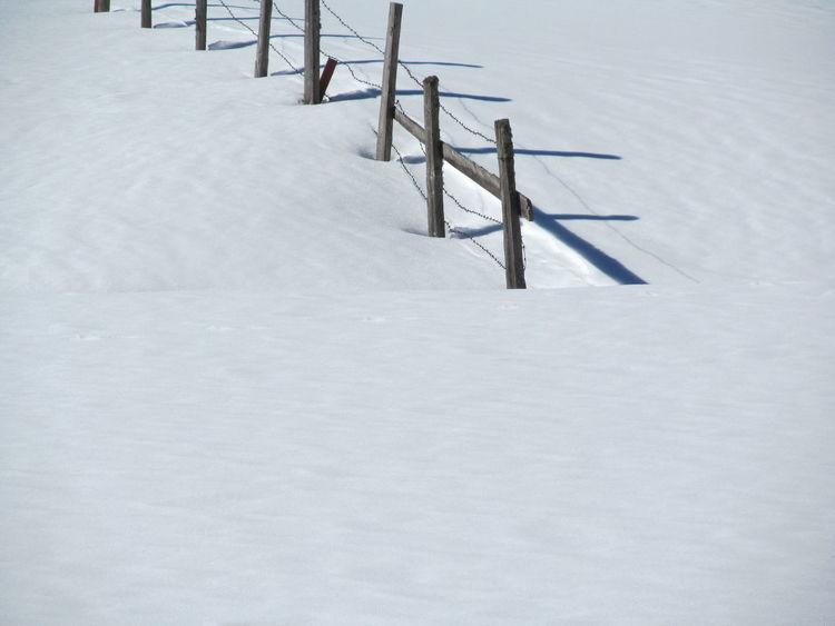 Schnee Zaun Osttirol Alm Shades Of Winter