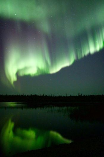 Canada Yellowknife Aurora Northern Lights Trip Landscape Northwest Territories GreatNight  Lake Mirror Green Stars Sky_collection Reflection Nightphotography Aurora Borealis カナダ オーロラ 星空 EyeEm Best Shots Check This Out Great Outdoors Enjoying Life Amazing View イエローナイフ Copyright (C) Nanook Aurora Tours