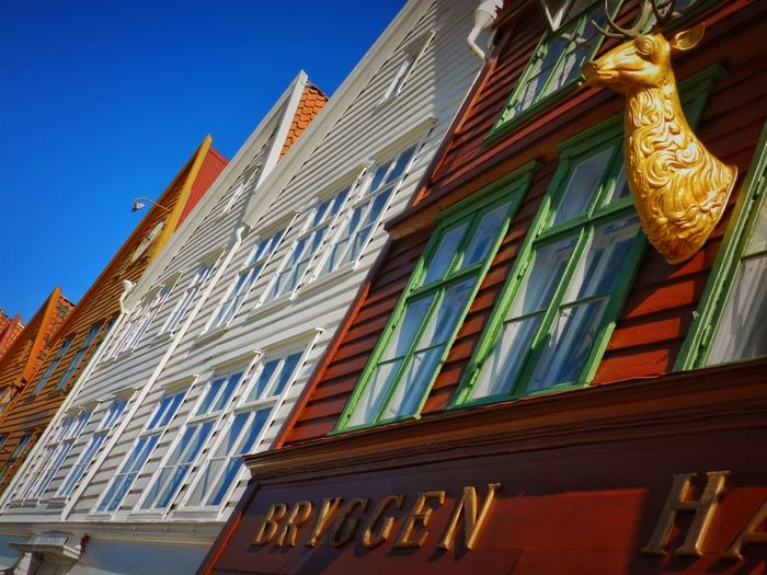 Bergen Houses Norway Architecture Blue Building Building Exterior Built Structure City Clear Sky Communication Day Façade Housefront Low Angle View Multi Colored Nature No People Outdoors Sky Text The Past Window