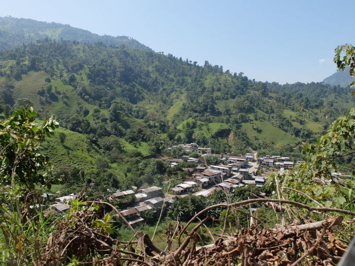Ecuador Forest Indigenous Village Landscape Mountain Nature Scenics South Africa Tranquility Tree Village