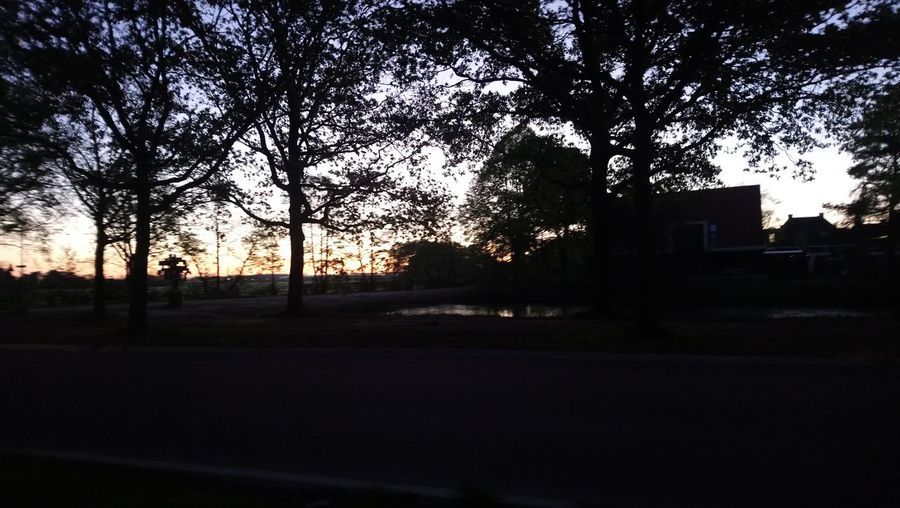 Love seeing the sun rise when going to work now. 05:19 right now. Sunrise Tree City Sunset Silhouette Sky Urban Scene